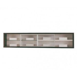 Wall Mounted Shelf with Glass Door